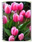 Skagit Valley Tulips 9 Spiral Notebook