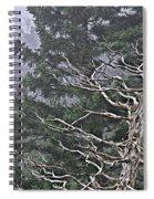 Skeletal Treescape Spiral Notebook