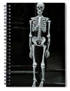 Skeleton New York City Spiral Notebook