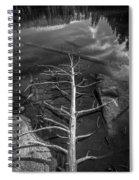 Skeleton Spiral Notebook