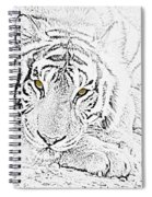 Sketch With Golden Eyes Spiral Notebook