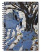 Skewbald Ponies In Winter Spiral Notebook