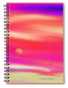 Skies 2 Spiral Notebook