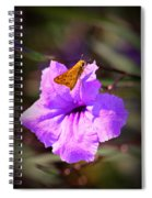 Skip It Insect Art Spiral Notebook