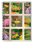 Skipper Butterfly Collage Spiral Notebook