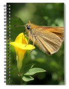 European Skipper On Bird's-foot Trefoil Spiral Notebook