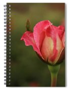 Skc 0422 Blossoming Bud Spiral Notebook