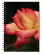 Skc 0432 Blooming And Blossoming Spiral Notebook