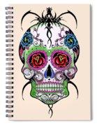 Skull 11 Spiral Notebook