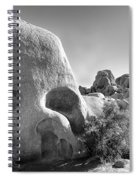 Skull Rock Spiral Notebook