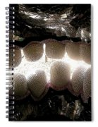 Skull Teeth Spiral Notebook