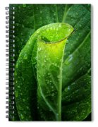 Skunk Cabbage Spiral Notebook