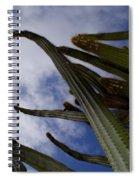 Sky Cactus Spiral Notebook