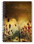 Autumn Lights Sky Colors  Spiral Notebook
