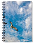 Sky Dance Spiral Notebook