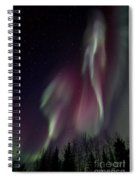 Sky Dancer Spiral Notebook