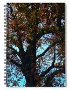 Sky Fall Spiral Notebook