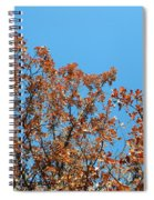 Sky Fall Spiral Notebook