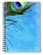 Sky Flight Spiral Notebook