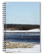 Sky Full Of Ducks Spiral Notebook