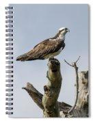 Sky Hunter 2 Spiral Notebook