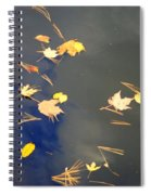 Sky Of Leaves Spiral Notebook