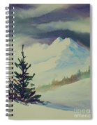 Sky Shadows And Spruce Spiral Notebook