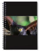 Sky Wolf Spiral Notebook