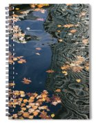 Skyscrapers' Reflections And Fallen Autumn Leaves Spiral Notebook