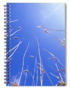 Skyward Spiral Notebook