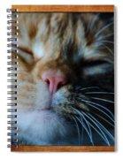 Sleeping Abby Framed Spiral Notebook
