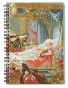 Sleeping Beauty And Prince Charming Spiral Notebook