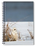 Sleeping Beauty Square Spiral Notebook