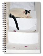 Sleeping Cat In Serifos Town Spiral Notebook