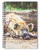 Sleeping Hyena Spiral Notebook