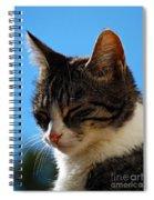 Sleeping In The Sun Spiral Notebook