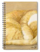 Sleeping Orange Tabby Cat Cathy Peek Animals Spiral Notebook