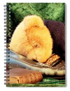 Sleeping Teddy Spiral Notebook