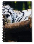 Sleeping Tiger Spiral Notebook