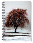 Sleeping Willow Spiral Notebook