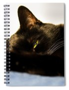 Sleeping With One Eye Open Spiral Notebook