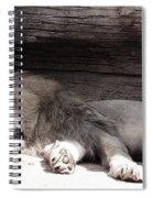Sleepy Beauty Spiral Notebook
