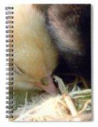Sleepy Cuddle Spiral Notebook