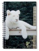 Sleepy Spiral Notebook