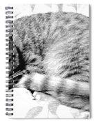 Sleepy Kitty Spiral Notebook