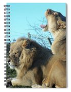 Sleepy Mighty Couple Spiral Notebook