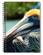 Sleepy Pelican Spiral Notebook