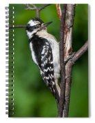 Sleepy Woodpecker Spiral Notebook