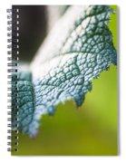 Slice Of Leaf Spiral Notebook