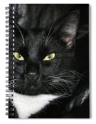 Slick The Black Cat Spiral Notebook